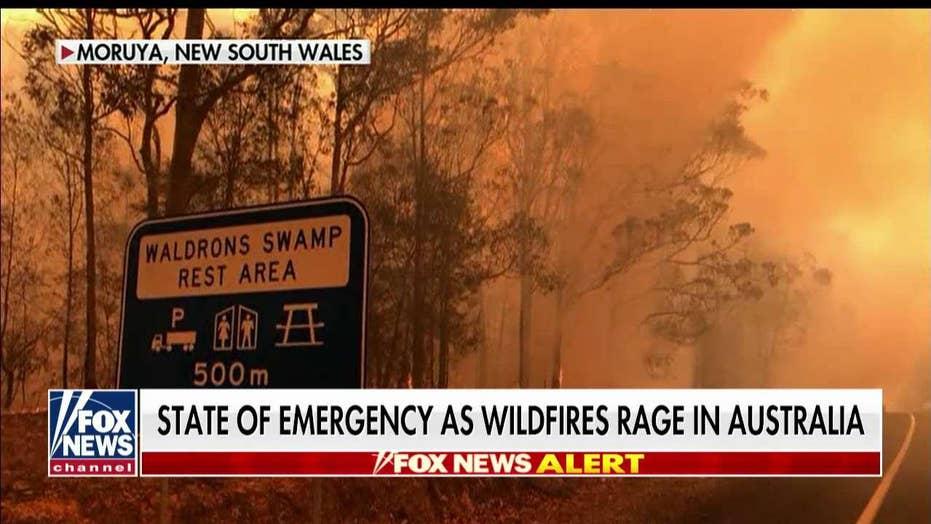 Anna Kooiman on Australia's devastating wildfires
