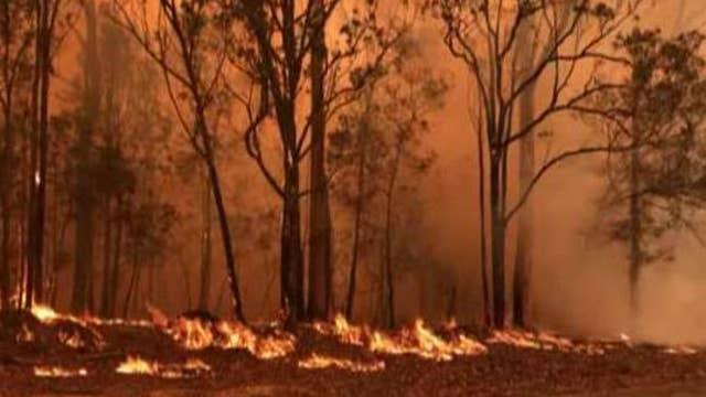 Australia bushfires have scorched more than 12M acres
