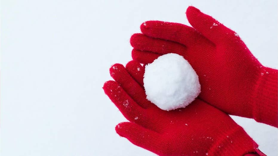 Cops: Wisconsin driver shoots 2 kids after they threw snowballs at car