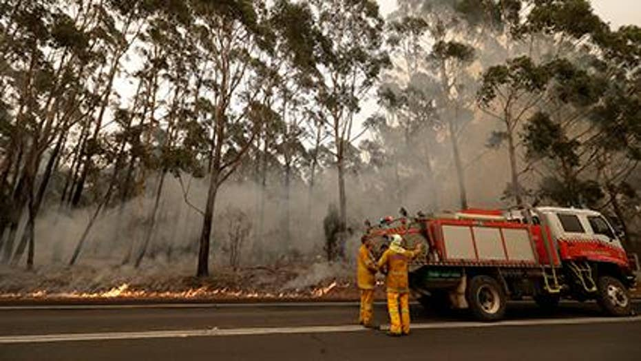 Race to save wildlife in Australia as fires continue to burn