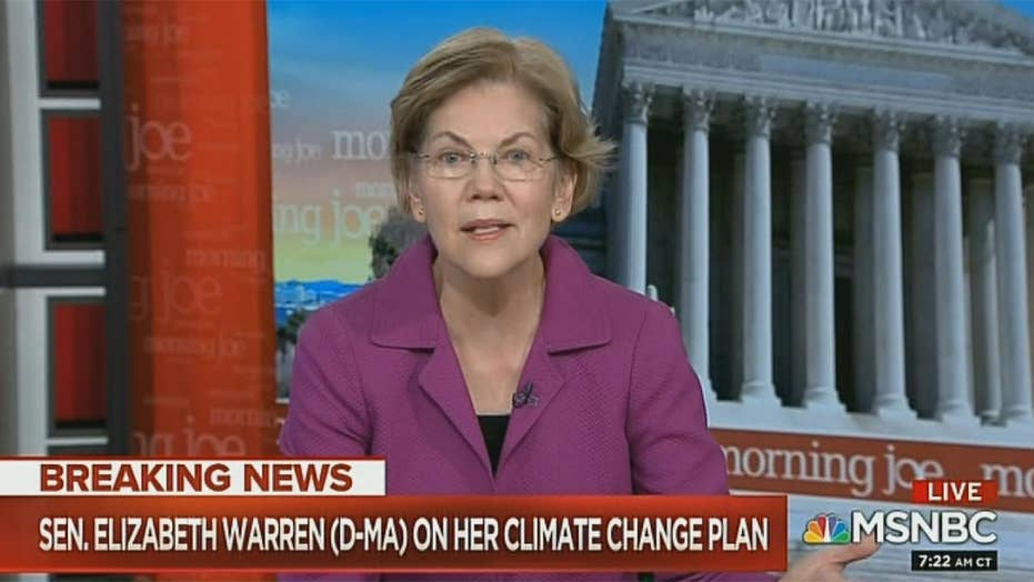Warren calls for no new buildings or houses without 'zero carbon footprint' by 2028