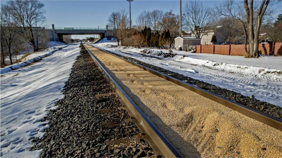 Minnesota railroad tracks filled with perfectly placed corn spill for more than third of a mile