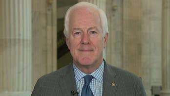 Cornyn rips GAO report that found White House violated law in freezing Ukraine aid