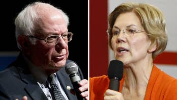 Rove: Warren, Sanders occupy same lane in Democrat Party and only one can survive