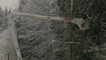 Winter storm in Pacific Northwest keeps power crews busy