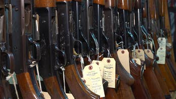 Over 30 Florida local governments sue state, seek ability to regulate firearms