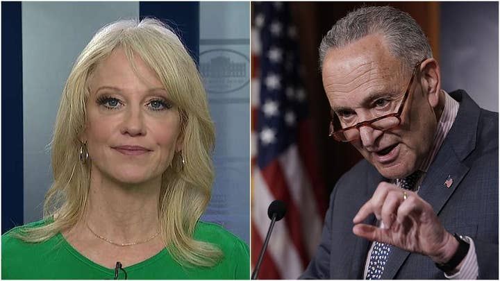 Kellyanne Conway warns Democrats calling for impeachment witnesses: Be careful what you wish for