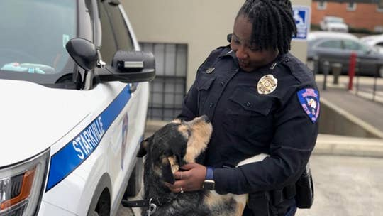 MS police officers do community outreach with shelter dogs