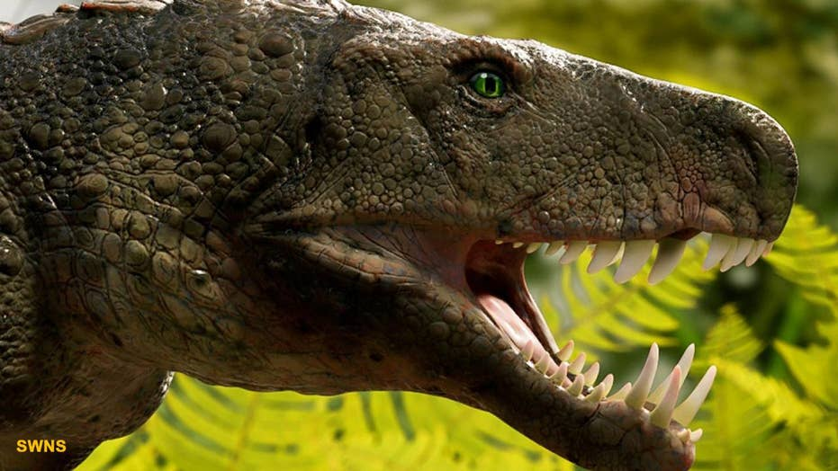 16-foot crocodile nicknamed 'swamp king' was Earth's terror millions of years ago