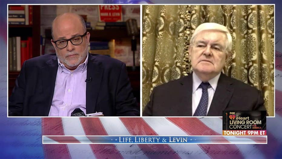Newt Gingrich: Coronavirus battle 'like a war,' so Americans must call lawmakers to stop the 'pork'