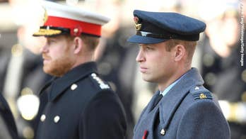 Prince Harry and Prince William are enduring 'fractures' in their relationship after royal exit: doc