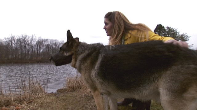 Retired marine reunites with service dog