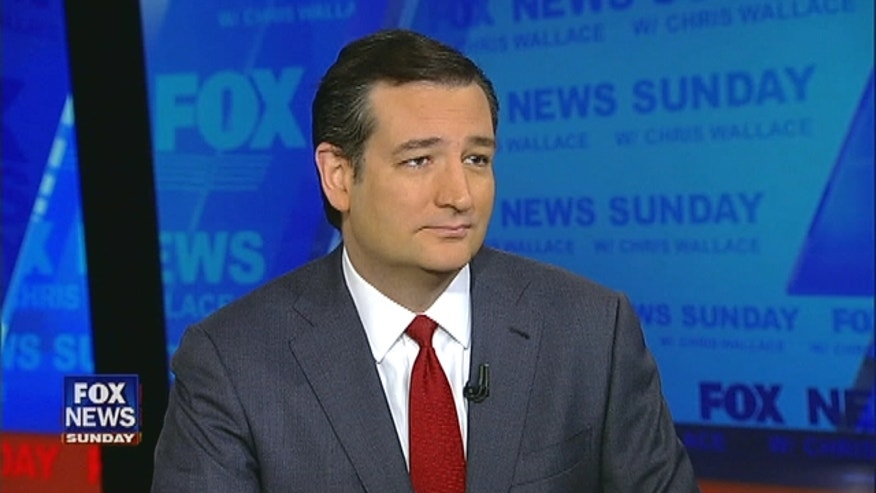 New Republican Senator Ted Cruz talks about his stance on the issues including gun control.