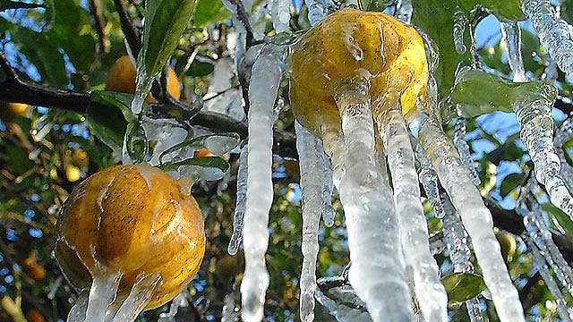 Arctic air puts Midwest, East in deep freeze