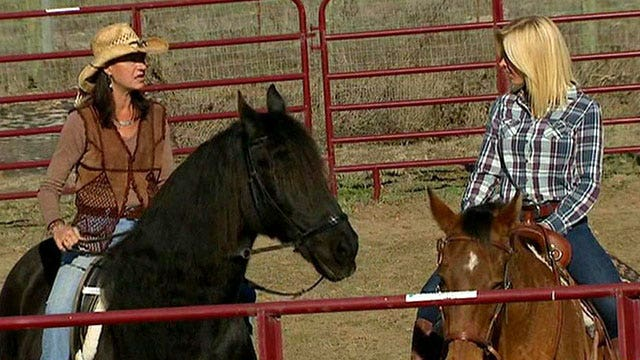 Can horses help veterans with PTSD?