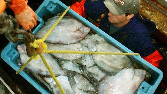 New England fishermen blast new catch limits