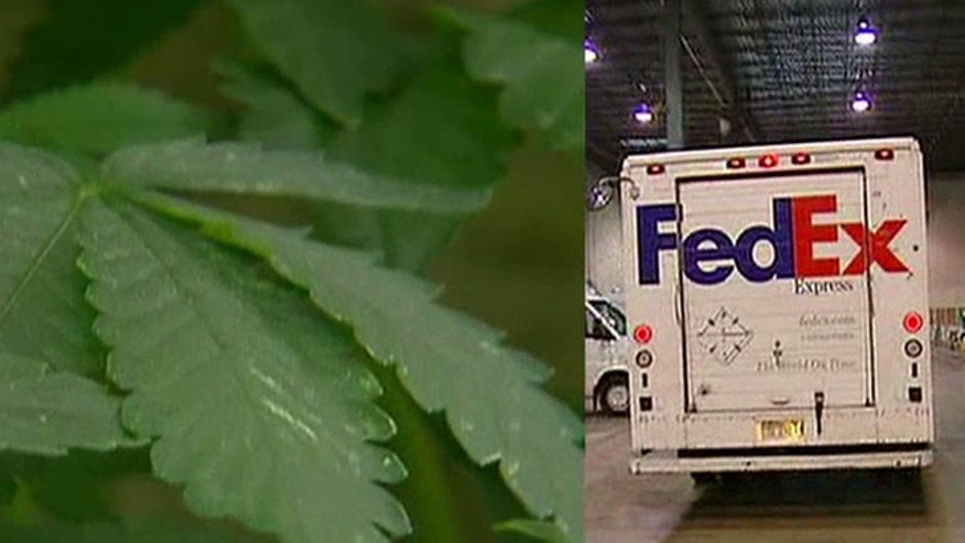 Mass Woman Sues Fedex Over Pot Delivery Says Dealers