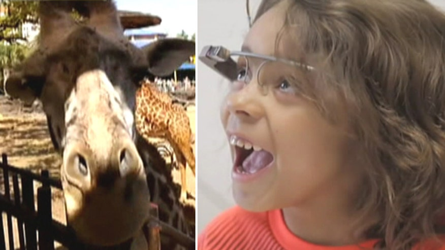 Children's Memorial Hermann Hospital gives pediatric patients the chance to virtually 'visit' the Houston Zoo