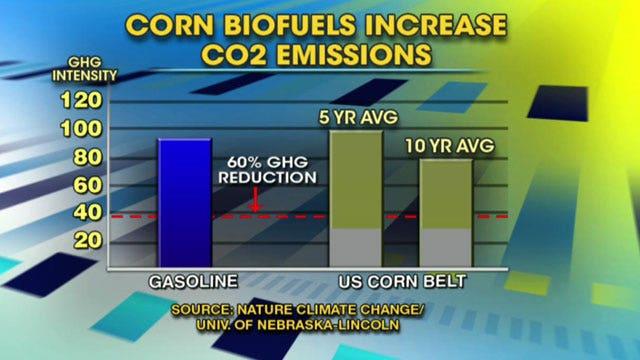 Study deals big blow to biofuel industry