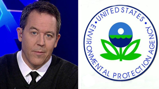 Gutfeld: What does it take to be fired from the government?