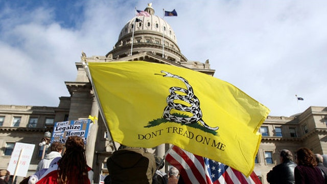 GOP finds IRS audits 10 percent of Tea Party donors
