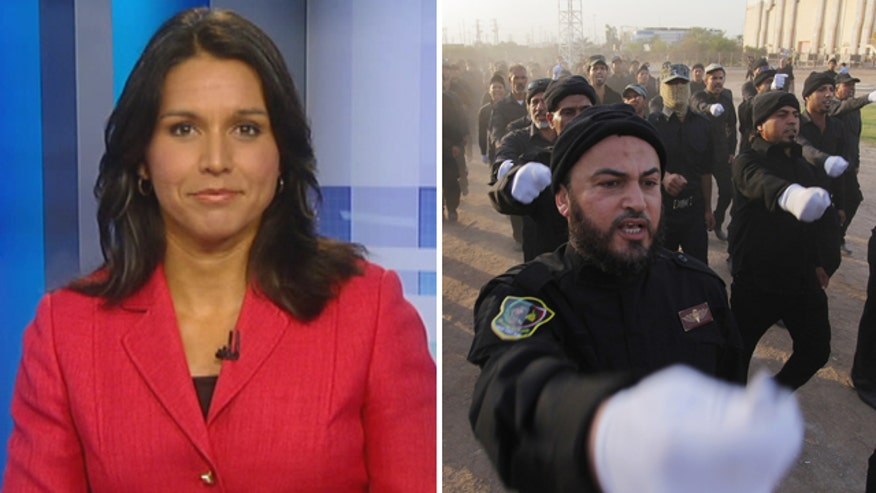 Democratic congresswoman - and Iraq war veteran - Tulsi Gabbard on President Obama's strategy in the crisis in Iraq