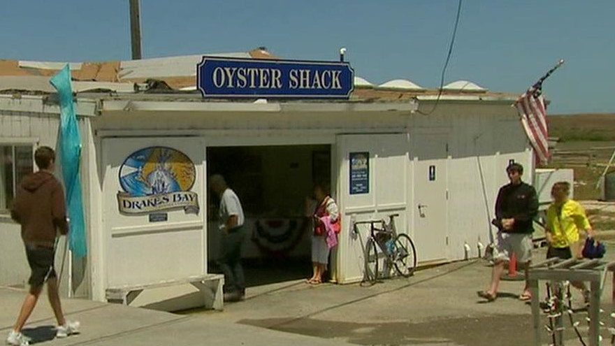 Farm vs feds: CA oyster farm fights to stay open