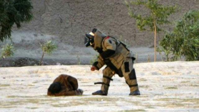 Real-life 'Hurt Locker': Afghan soldier defuses suicide vest