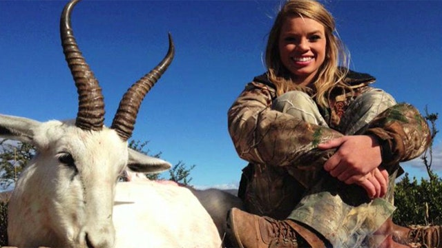 Truth behind big game hunts