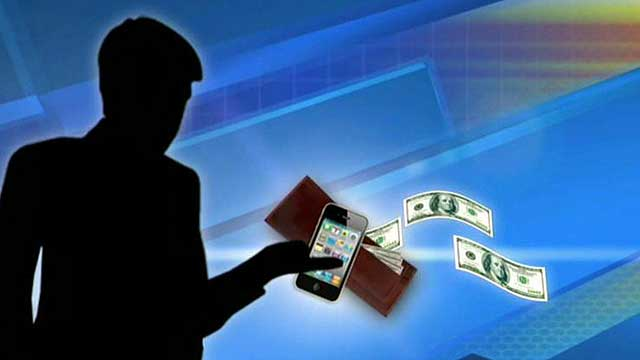Taxpayers' privacy, wallets under attack?