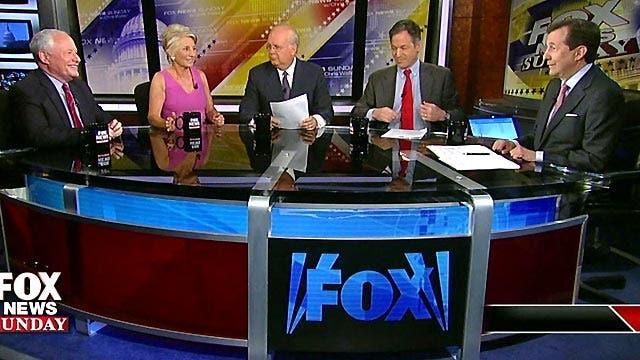 Panel Plus: 7/14/2013
