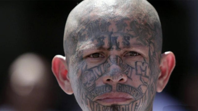 Exclusive: Dangerous gangs found inside border facility