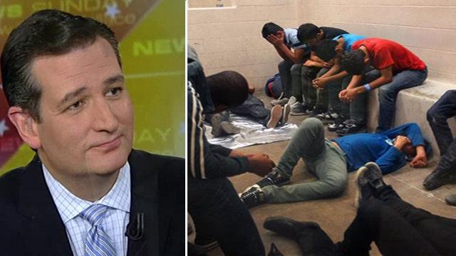 Can Sen. Ted Cruz solve border crisis?