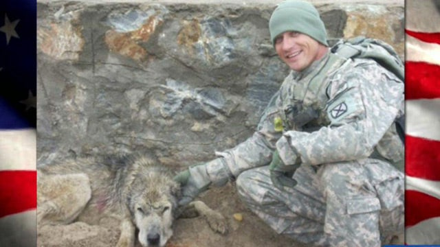 Wounded vet ticketed for service dog?