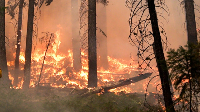 Massive wildfire grows as officials report progress in fight