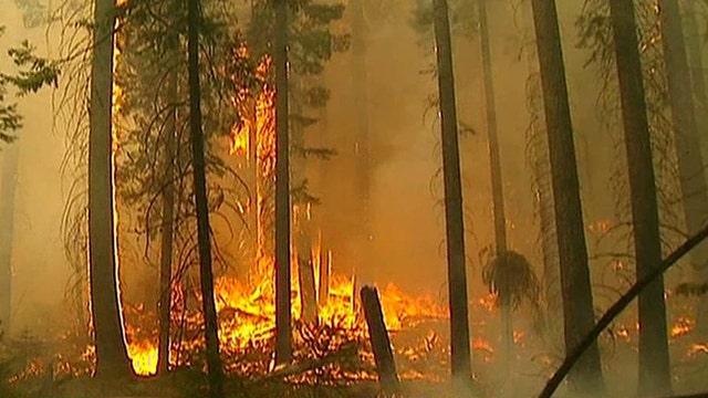 Yosemite's Rim wildfire grows; just 23 percent contained
