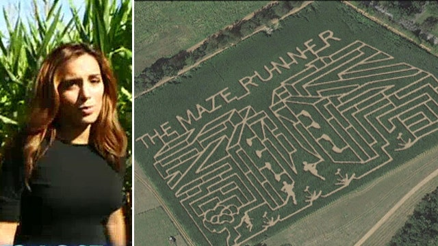 Can Maria escape real-life 'Maze Runner' labyrinth?