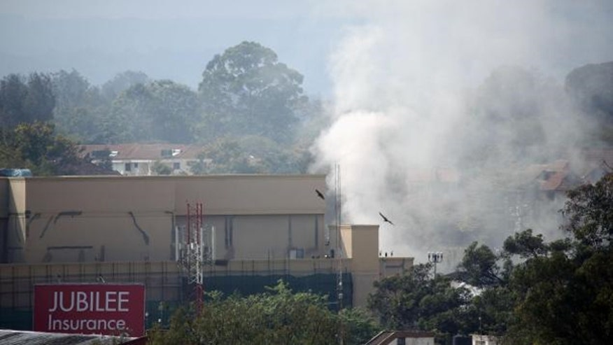 SEALs kill alleged Al-Qaeda linked leader of Kenya mall attack