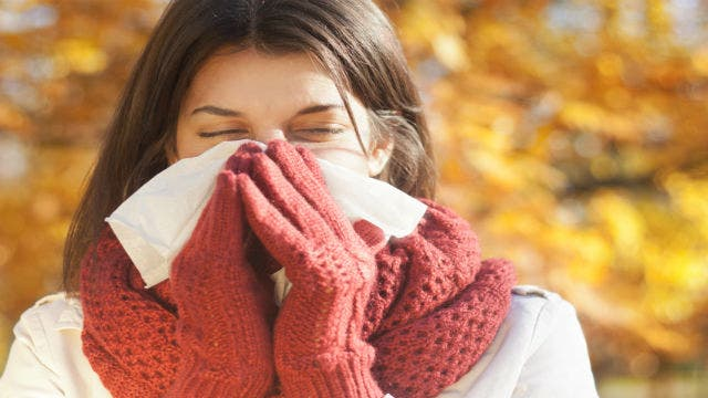 How to survive fall allergies