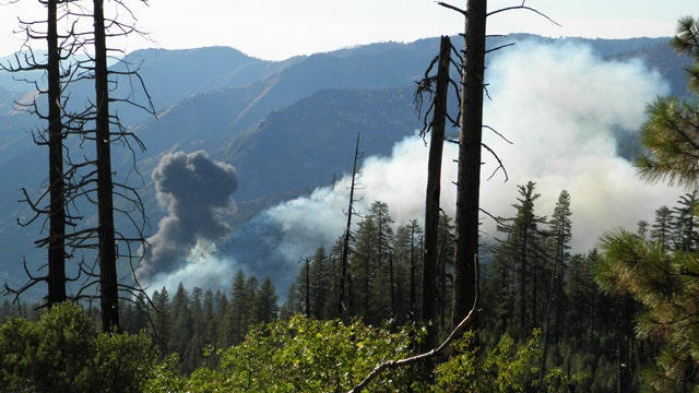 Pilot fighting wildfire dies after air tanker crashes