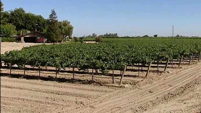 Food prices spike as California's historic drought drags on