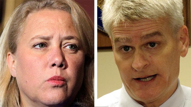 A look at the candidates in the Louisiana Senate battle