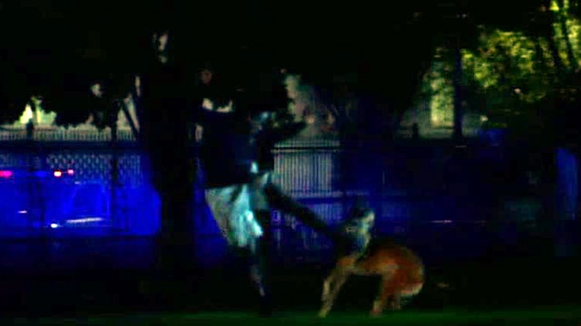 White House jumper kicks dog after scaling fence