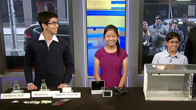 Young scientists showcased in national competition