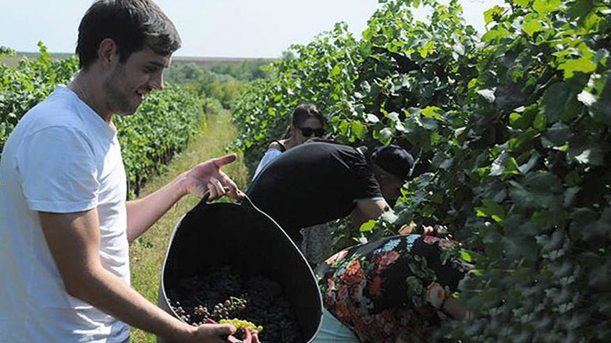 Moldova struggles with Russian sanctions to gain global exposure of their wine. Wine that has been produced in that region for over 5000 years.