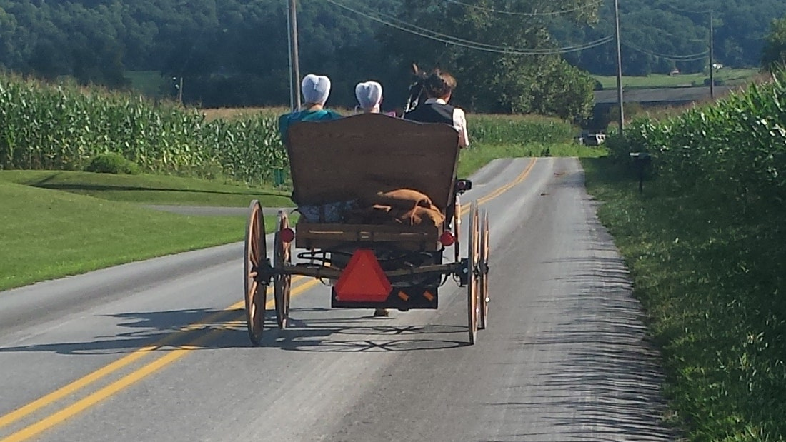 Health habits to steal from the Amish