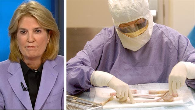 Greta: ObamaCare torpedoing medical research, development