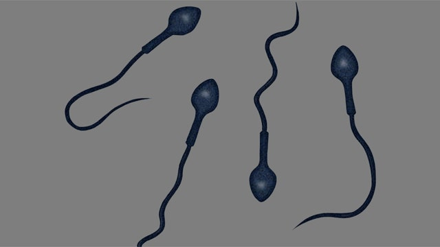 'Robotic' sperm to fight infertility?
