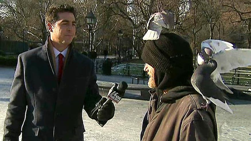 Jesse Watters quizzes folks on their Christmas knowledge