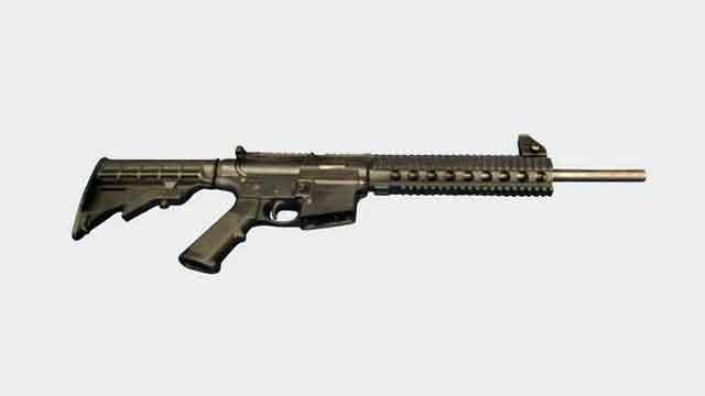 The future of gun control in America